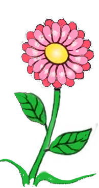 Blumen für den reittherapeutischen Sportverein